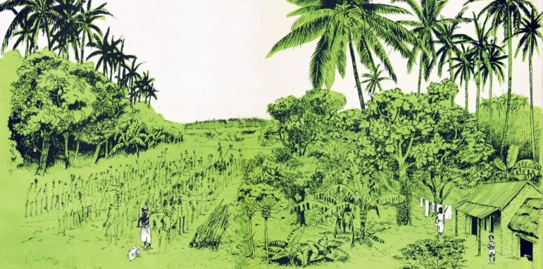 Image from the cover of Conservation Farming book by Ray Wijewardene
