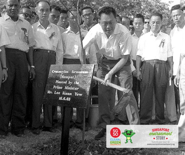 Tree Planting Campaign was launched by then Prime Minister, Mr Lee Kuan Yew, in 1963