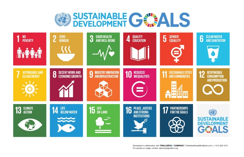 SDGs in a nutshell - courtesy UN