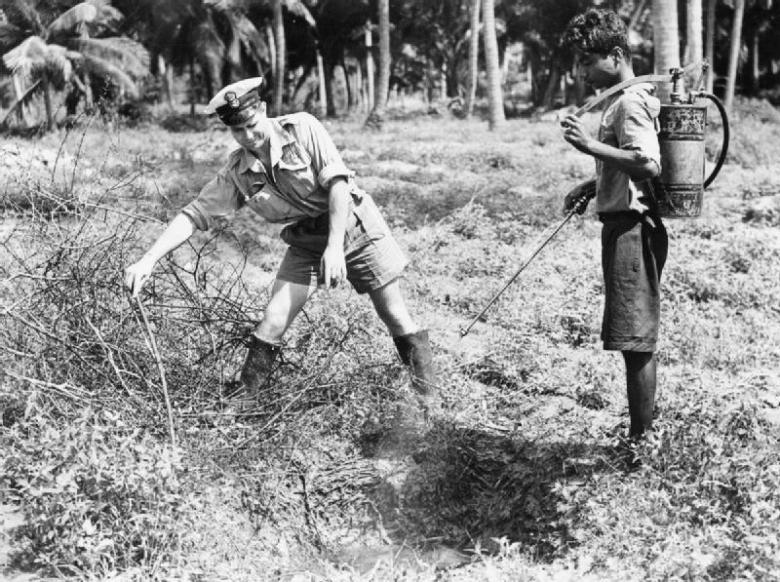The Royal Naval School of Malaria and Hygiene Control - War-time spraying of DDT near Colombo, Ceylon, December 1944 – Image Imperial War Museum, UK © IWM (A 28178)
